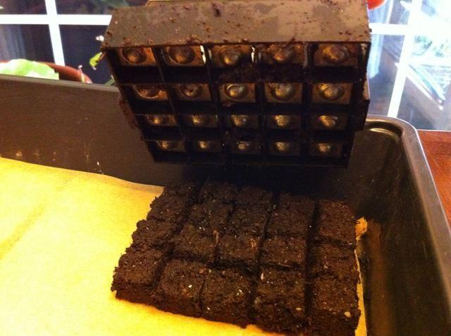 Empuje los cubos de bloqueo en su posición en bandeja de semillas. Si bloqueador posición vertical, puede obtener 3 cuadras enteras perfectamente a través de la bandeja x 5 bloques longitudinales (añadimos última fila a mano) para 312 cubos.