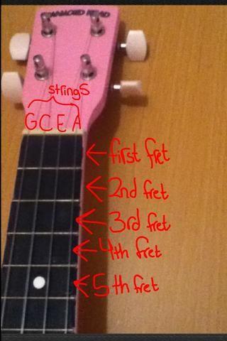 Sólo utiliza los primeros 5 trastes para que la mayoría de los acordes básicos en el ukelele. Un traste es el espacio entre dos líneas en el ukelele.