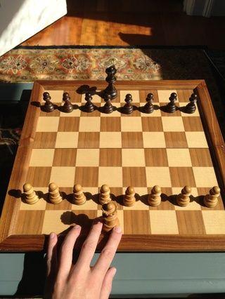 Su reina, mi señor. Ella se mueve en cualquier dirección, por lo que a ella le gusta, adelante y atrás. Perder la reina suele ser catastrófico para su juego, a menos que's part of your overall plan for checkmate...