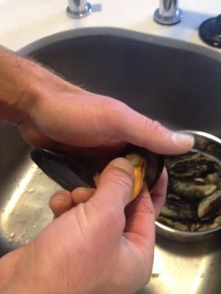 Ello's time to pull each mussel off shell while also removing the big adductor muscle (which is what allows them to open and close). Place thumb and forefinger on either side of mussel, pulling firmly.