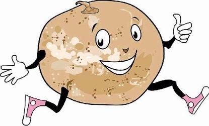 Españoles extendieron el cultivo de jícama desde México a Filipinas, desde allí, a China y otras partes de Asia. Conocido por una serie de nombres, se's eaten raw or cooked. This is the way I do it!