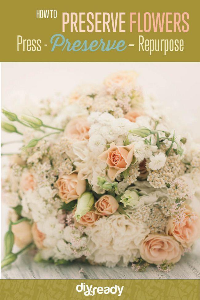 Fotografía - Cómo conservar las flores