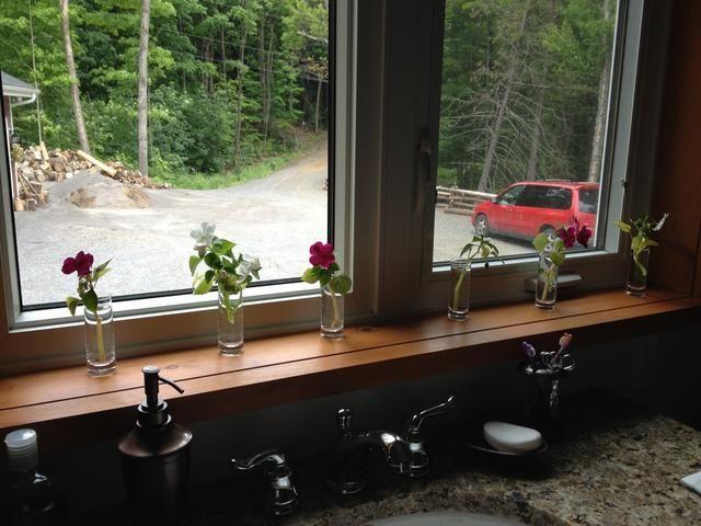 yo'll keep them on my bathroom windowsill until roots magically appear.
