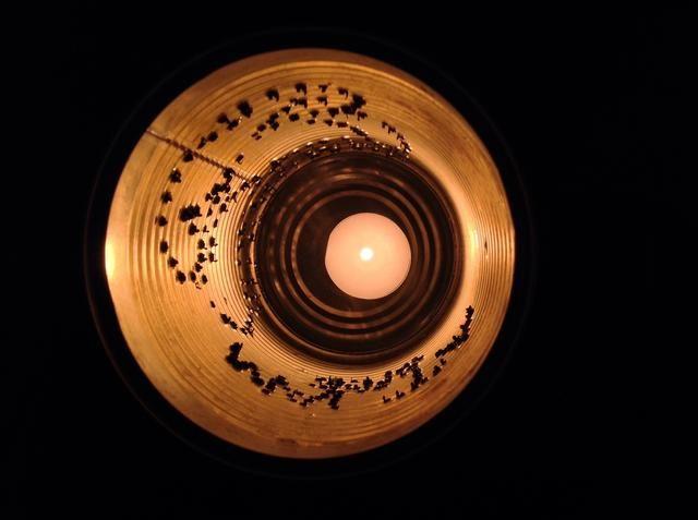 Alise los bordes puntiagudos utilizando una herramienta de archivo. Una vela se coloca dentro de la lata.
