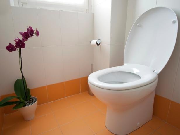 Sacar y reemplazar un WC
