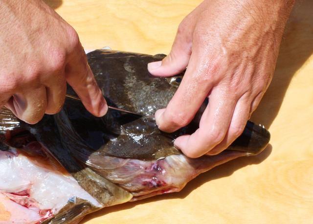 Inserte la punta de su cuchillo en el borde de la mejilla halibut.