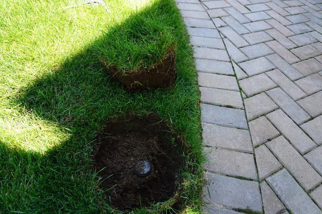Utilice la pala como palanca para hacer estallar la hierba para arriba. Una vez suelto, se puede agarrar como lo haría alguien's hair and pull it up out of the hole.