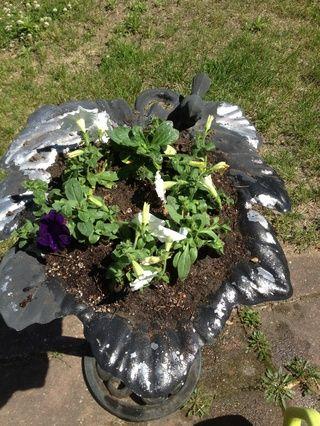 Plante sus flores que viven un poco de espacio. Riegue bien y asegurarse de que el agua está drenando bien. Y ahí lo tienes. Usted acaba de hacer su baño del pájaro una maceta bonita.