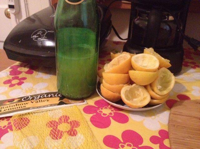 Cómo ahorrar el jugo de los limones Receta