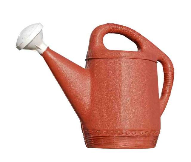 Tan pronto como los gusanos empezar a digerir los alimentos van a producir té del gusano. Este maravilloso fertilizante se puede usar, diluir 1 parte a 10 partes de agua, en su jardín, plantas en macetas y en el parche de vegetales.