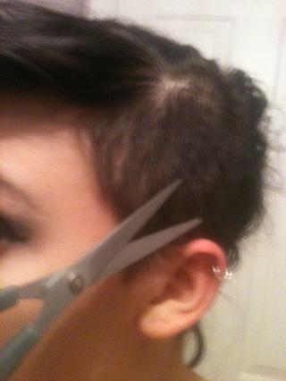 Recorte cualquier pelo perdido. (Pido disculpas por la imagen borrosa!)