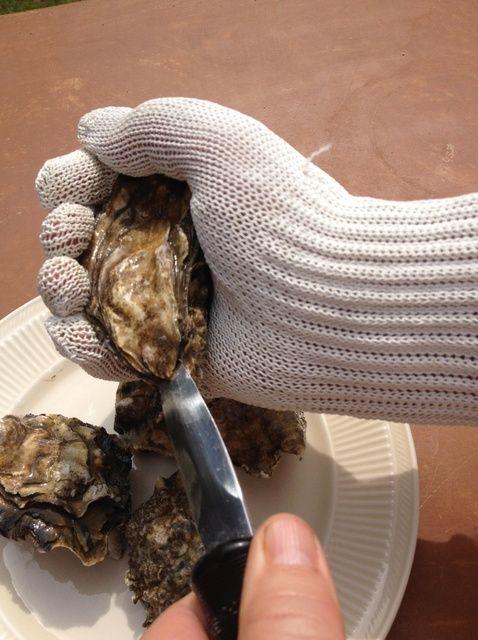 Fotografía - Cómo Shuck una Oyster