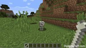 Luego se sube al lobo y simplemente clic derecho sobre el lobo!
