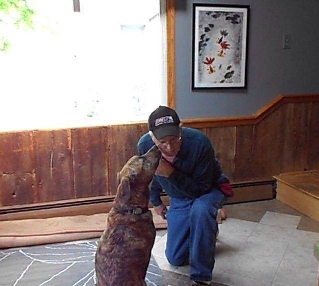 Si no quiere tener el perro besar tus labios se puede colocar un poco de mantequilla de maní en usted mejilla. Apunte y dar los besos de comandos verbales.