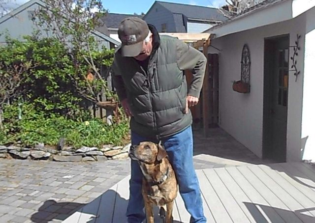 La práctica y la paciencia y su perro será capaz de jugar al escondite de toda la sala o en el patio. Asegúrese de añadir algunas distracciones. La atención es importante para llamar a sus perros nombrar antes de dar la señal de mano.