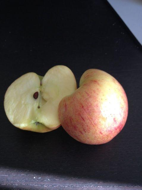 Fotografía - Cómo Tear una manzana por la mitad!