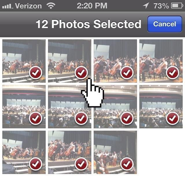 Seleccione todas las fotos que desea enviar.