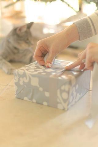 Coloque la cinta por debajo del regalo y asegúrese de que cada lado es igual de largo. Me gusta el lado de satén de la cinta de salida. Haga un nudo en el centro tan fuerte como puedas y mantener el nudo en su lugar.