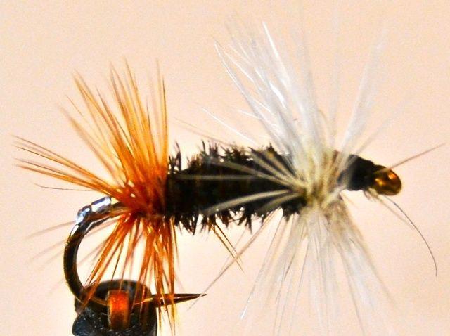 Fotografía - Cómo atar un renegado de la mosca de la pesca con mosca