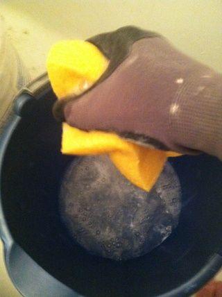 Una vez que su hecho conseguir un cubo de agua y una esponja. Escurra la esponja muy seco.