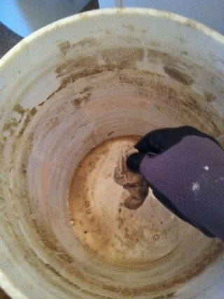 yo'm using white grout so I NEEDED to clean the bucket so that the grout matches existing white grout.