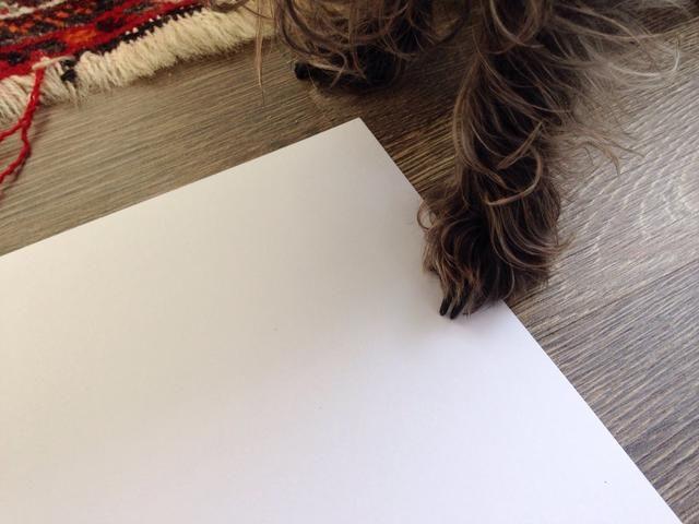 Haga el cheque de papel otra vez! :-) Si se puede deslizar un pedazo de papel debajo de ellos,'re good!