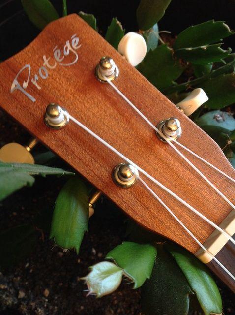 Fotografía - Cómo ajustar su ukulele en Cuatro Pasos