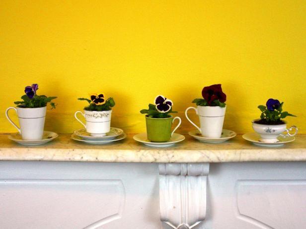 Fotografía - Cómo activar las tazas de té antiguos y platillos en macetas de jardín