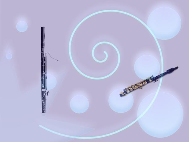 El fagot tiene un sonido bajo. El PICCOLO tiene un sonido de alta. Son los llamados instrumentos de viento. Ellos también pueden hacer que un golpe o una melodía.
