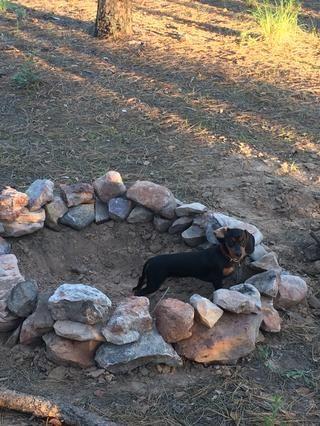 Lo hizo muy bien en su primer viaje de camping - pero chico ha sacado sucio!