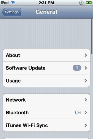 Toque en Actualización de software.