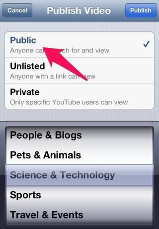 Elija de ustedes quieren el video'Public' or otherwise and then click 'Publish' on the top right corner