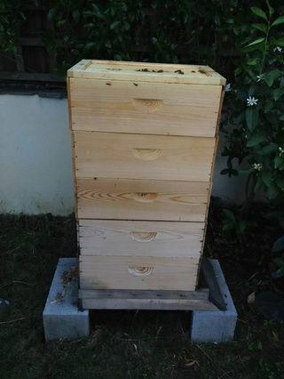 Retire la tapa de la colmena. Averiguar donde su tablero de escape irá. Debe estar por encima de las cajas de cría, y por debajo de las alzas de miel.