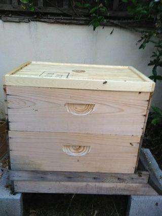 Coloque la junta de escape abeja, correcto hacia arriba, en la parte superior de las cajas de cría. Asegúrese de que quede al ras, y no hay huecos.
