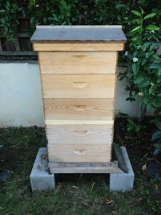 Coloque alzas de miel en la parte superior de la placa de escape. Durante la noche, las abejas en las alzas de miel se van hacia abajo en el cuadro de cría para estar con el clúster. Al día siguiente, usted puede arrebatar fácilmente que la miel!