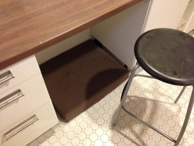 Por debajo de la encimera es un espacio para poner mis pies mientras se sentaba. El colchón está allí en caso de que uno de nuestros perros decide visitar.