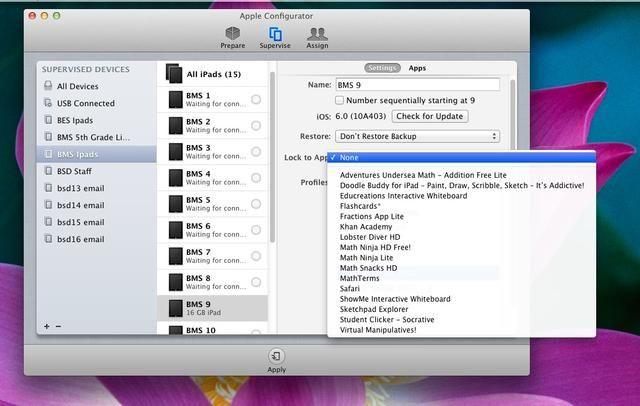 Parte de la nueva actualización es la posibilidad de bloquear el iPad a una aplicación. Se puede adivinar el uso para esto - yup - PRUEBAS !!!