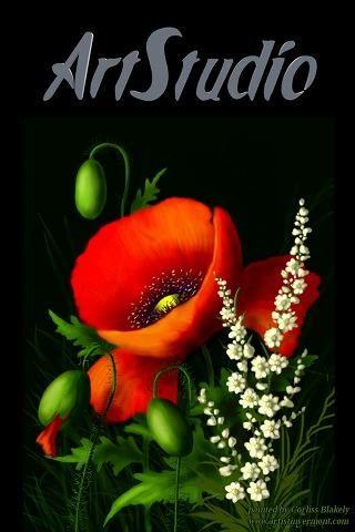 La aplicación se llama ArtStudio y sí, esta imagen fue creado en la aplicación.