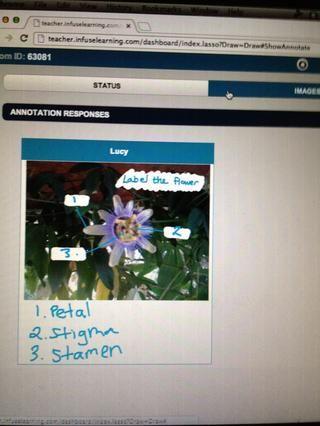Profesor Vista: Instantáneas de respuestas de los estudiantes son capturados y revisable bajo el