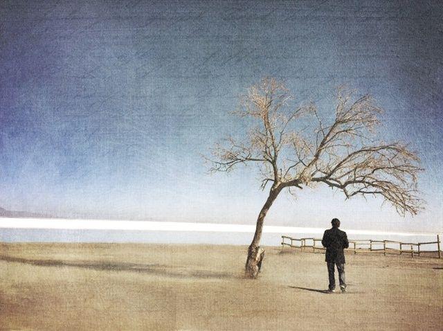 Fotografía - Cómo utilizar iOS Apps dibujo digital para hacer arte digital