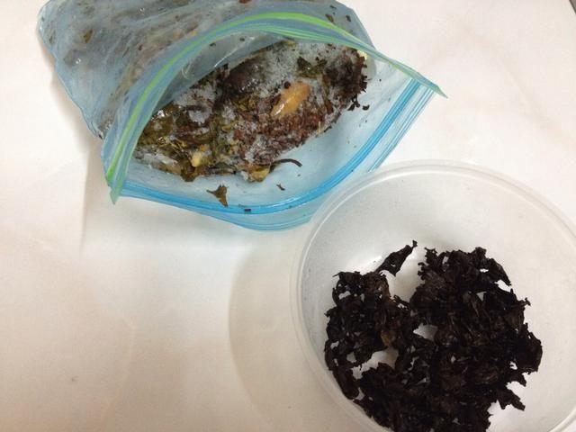 Cuando usted tiene suficiente de hojas de té almacenado ...