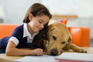Fotografía - Está fomentando perros demasiado duro con los niños?