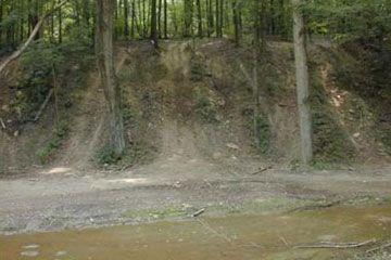 Fotografía - Está fuera de la carretera malo para el medio ambiente?