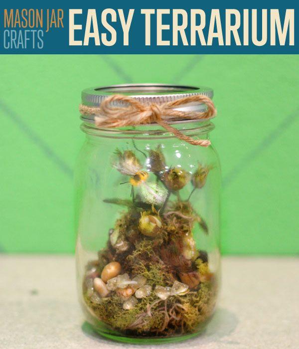 Fotografía - Mason ideas del arte Jar | Cómo hacer un terrario