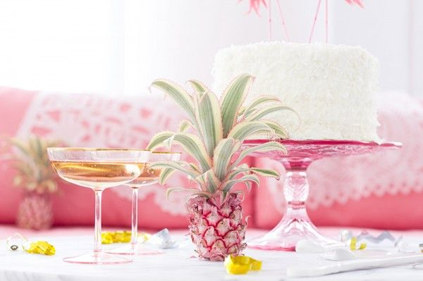 Rosa en rosa