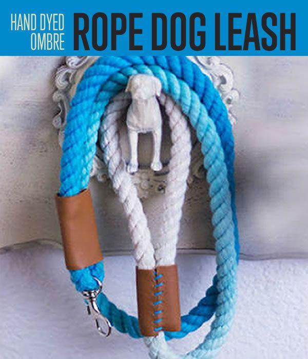 Fotografía - Ombre cuerda correa del perro | DIY proyectos favoritos