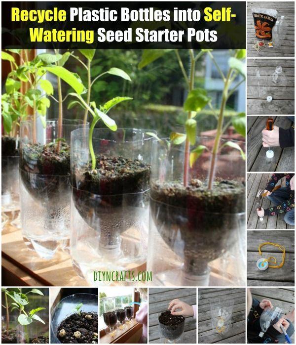 Botellas de reciclaje de plástico en la auto-riego de semillas Ollas Starter - Brillante idea!