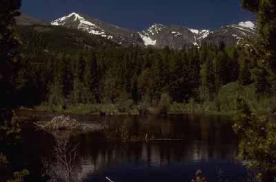 Fotografía - Rocky Mountain National Park