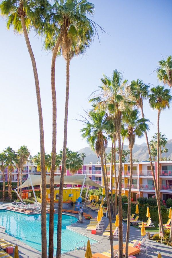 Rainbow Hotel | Saguaro Palm Springs