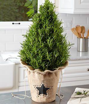 Tablero decorativo árbol de Navidad - ProFlowers